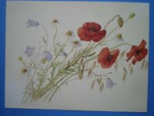 POSTCARD COMMON RED POPPY - HAREBELL - MAYWEED