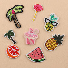 8pcs Embroidered Sew Iron on Patch Badge Fruit Pineapple Cloth Fabric Applique