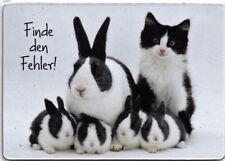 Kühlschrank - Magnet: Finde den Fehler - Hasen und Katze - Find the Fault!