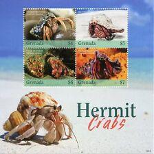 Grenada 2019 MNH Hermit Crabs 4v M/S Seashells Marine Animals Stamps