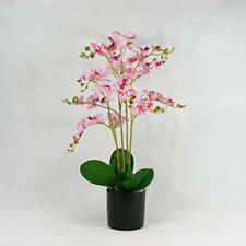 Wild Phalaenopsis Orchid Silk Artificial Potted Plants Home & Office Pink