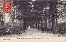 GOUPILLIERES grande allée du château éd lesieur timbrée 1912