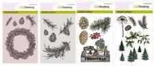 Stempel Weihnachten Zweige Tanne, Clear Stamps aus Silikon, Craftemotions