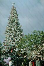 1966 DISNEYLAND christmas tree candid   35mm Photo SLIDE Bt12