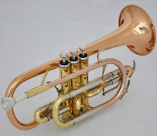Professional Rose Brass Cornet horn B-flat NEW Double triggers Trumpet With Case