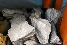 20 LBS -- Seiryu Stone --  Rock Aquascaping ADA Aquarium Plant Shrimp Driftwood