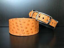 S/M Leather Dog Collar LINED Greyhound Whippet Saluki CARAMEL OSTRICH SKIN