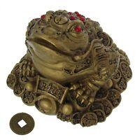 Feng Shui Dreibeinige Kröte mit Glücksmünzen Deko Glück und Wohlstand
