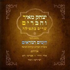 Yitzchak Meir-Yamim Noraim