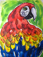 Parrot Bird Red Head Beak Home Pet Feathers Zoo Collectible ACEO Art Card