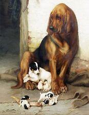 "William Henry Trood, Blood Hound Dog, terriers, Puppies, ART PRINT, 14""x11"""