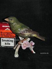 +# A015567_03 Goebel Archiv Muster Vogel Bird Fink Grünfink Greenfinch 38-009