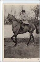 ~1920 Prince WALES Horse Pferd Real Echtfoto-Postcard Tier Motivkarte selten