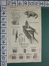 1754 Antiguo impresión Marmotte madrepora mantelet diagramas mástiles Marquetería De Albañilería