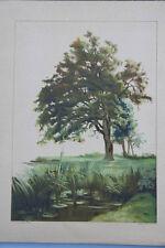 Henri Laurens - Landschaft, Lithographie