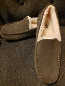 UGG Men's Ascot Pure Wool Suede Slipper Size 11 Burnt Olive Brown NEW