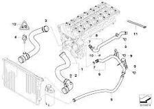 Top Radiator Hose Genuine BMW 3 series E46 320Ci 320i M54 M52 330i 11531436408