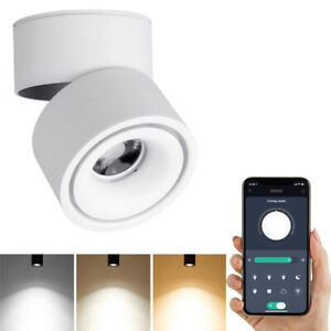 Dimmable Smart LED Ceiling Spotlight-Adjustable Surface Mounted 10W COB Lighting