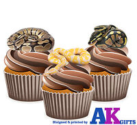 PRECUTS Reptile Python Snakes 12 Edible Cupcake Toppers Birthday Decorations