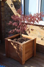 Hardwood Iroko Planter /Square Garden Plant Pot/ acer tree / palm tree planters