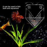 Aquarium Cone Red Worm Feeder Fish Tank V-Shape Brine Shrimp Feeder Safety G6A