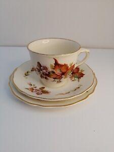 ROYAL DOULTON WILTON X 2  TRIOS  TEA CUPS AND SAUCERS TEA PLATES