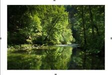 Photo Printemps - Frühling  Collection Les 4 Saisons - Nature in 4 seasons