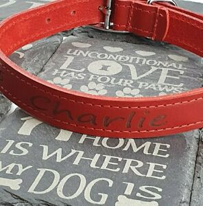 Personalised Custom Leather Dog Collar, Puppy decide your own wording Red colour