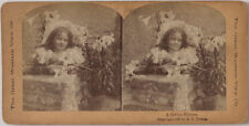 "Echtes Original 1897 Stereofoto Genre ""A Living Picture"""