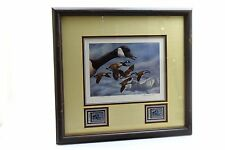 1986 First Montana Waterfowl Duck Stamp Print Framed Joe Thornbourgh