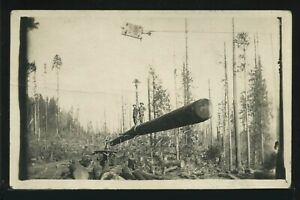 Rare OR Knappa RPPC 1910s LOGGING OPERATION Men Standing on Suspended Log
