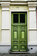"""Photo Background - Backdrop Outlet """"Green Door""""  Platinum Cloth - 10x10 - PC660"""