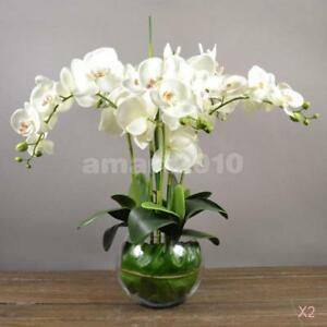 2pcs Fake 12 Heads Orchid Phalaenopsis Flowers Bouquet Party Decor White
