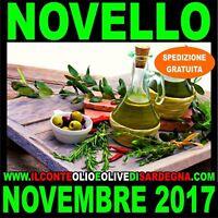5 Lt Olio extravergine di oliva biologico estratto a freddo - SARDEGNA 2017 2018