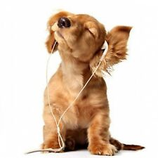 DOG GREETING CARD WITH C.D - RELAXING CHILLOUT MUSIC