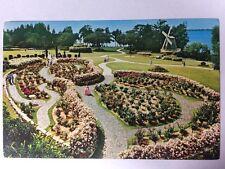 Flowers at Cypress Gardens, Florida FL Rose Display Chrome Postcard Unused
