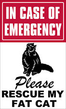 3x6 inch In Case of Emergency Please Rescue My Fat Cat Sticker - decal save fire