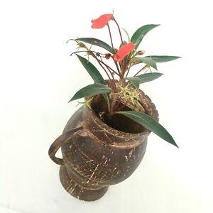 Coconut Shell VINTAGE FLOWER VASE Unique Eco Friendly 100% Natural Home Décor