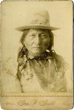 Native American Indian Lakota Chief Sitting Bull 1883 7x5 Inch Reprint Photo