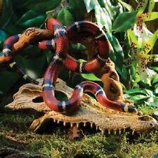 EXO Terra Crocodi TESCHIO Vivarium/terrario DEN Pelle di Serpente LIZZARD Gecko