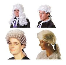 Mens Halloween White Court Barrister Judge Lawyer Wig Hair Fancy Dress Accessory