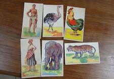 6 x CHROMOS TRADE CARD circa. 1930 LA GADUASE animaux et peuples à decouper