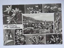 Saluti da GRIZZO VALCELLINA vedutine Pordenone vecchia cartolina