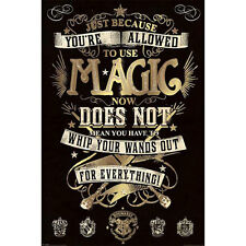 Harry Potter - Allowed To Use Magic POSTER 61x91cm NEW * Hogwarts Wand Spells