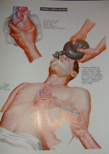 Ciba Collection of Medical illustrations anatomy heart human volume 5 anatomie