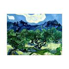 Vincent Van Gogh Olive Trees with the Alpilles Vintage Print-FREE US SHIPPING