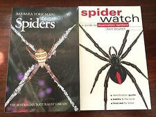SPIDER WATCH Guide to Australian BRUNET.  YORK MAIN. ID Field