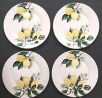 """New Set of 4 Royal Norfolk Lemons Dinner Plates Citrus Dishes 10.5"""" Diameter"""