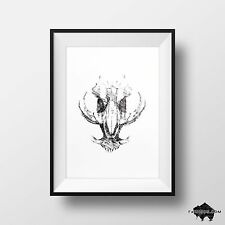 Warthog Animal Skull Drawing - Signed Original Pen & Ink Illustration