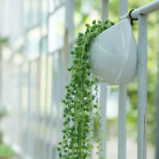 Artificial Flower String of Pearl Hanging Artificial Succulents Plants Green